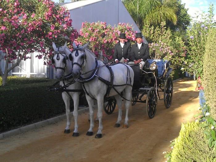 A lo cenicienta: Novias en coches de caballo