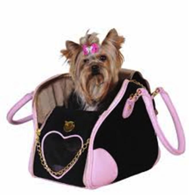 Bolsos viajar perros